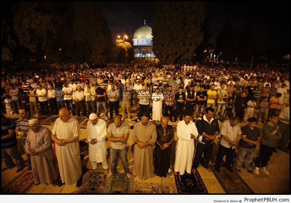 2013 Taraweeh Prayers Outside Dome of the Rock (al-Quds, Palestine) - Al-Quds (Jerusalem), Palestine