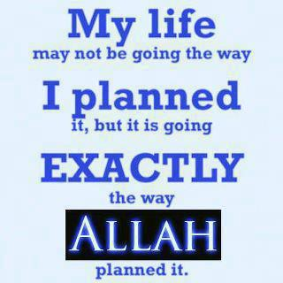Life is going exactly the way Allah swt plannet it