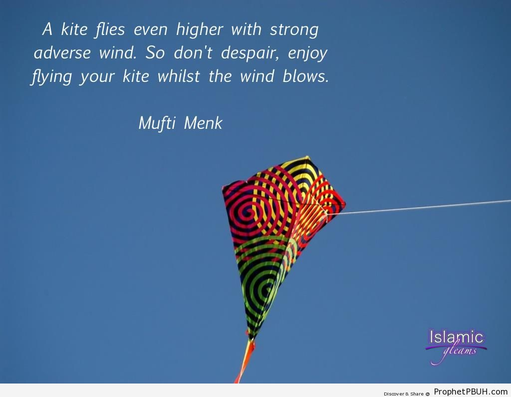 A kite flies even higher with strong adverse wind - Islamic Quotes