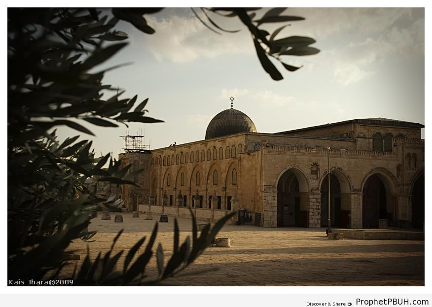 Al-Aqsa Mosque (Jerusalem) - Al-Aqsa Mosque (Bayt al-Muqaddas) in Jerusalem, Palestine -Picture