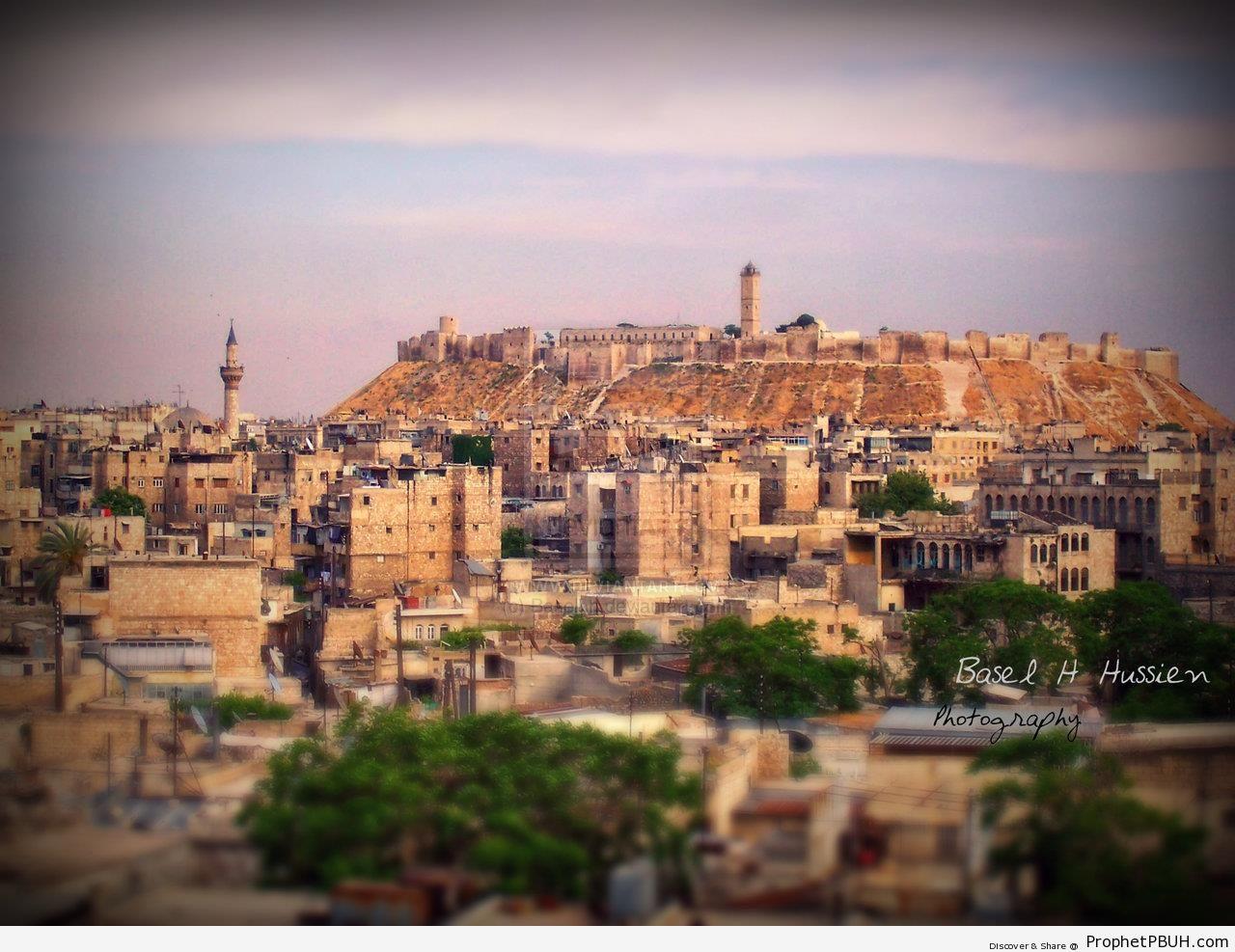 Al-Uthmaniyyah Mosque and Aleppo Citadel (Old City Aleppo, Syria) - Al-Uthmaniyah Mosque and Madrasa in Aleppo, Syria -Picture