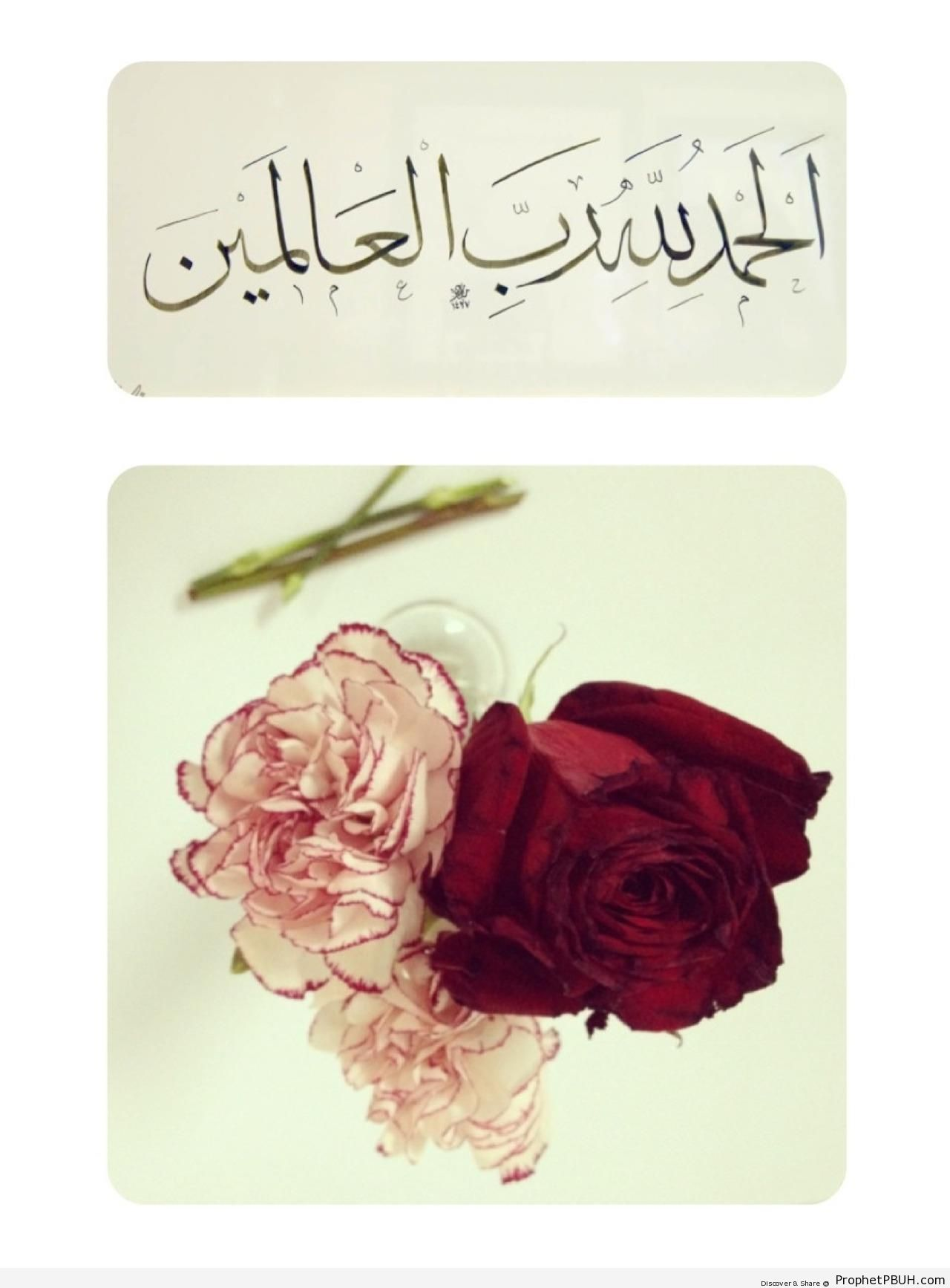 Alhamdulillah in Thuluth Calligraphy (Quran 1-2 - Surat al-Fatihah and Others) - Alhamdulillah Calligraphy and Typography