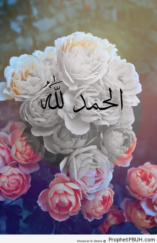 Alhamdulillah on flowers alhamdulillah calligraphy and typography alhamdulillah on flowers alhamdulillah calligraphy and typography thecheapjerseys Image collections