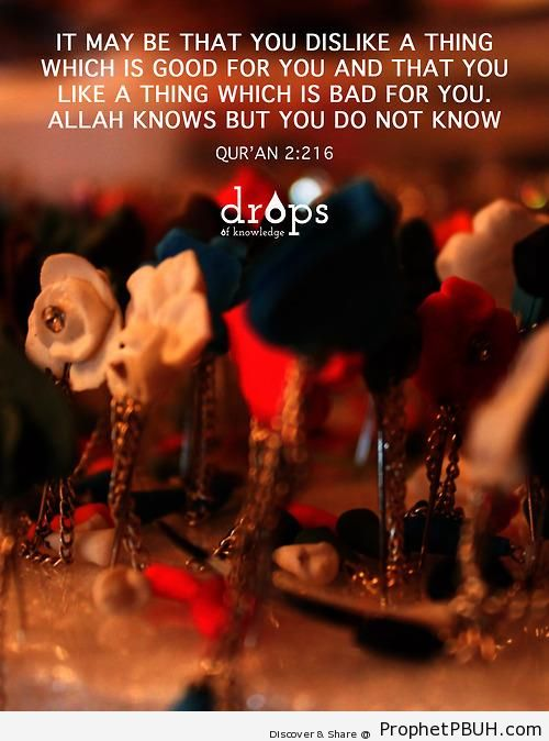 Allah Knows But You Do Not (Quran 2-216 - Surat al-Baqarah) - Quran 2-216