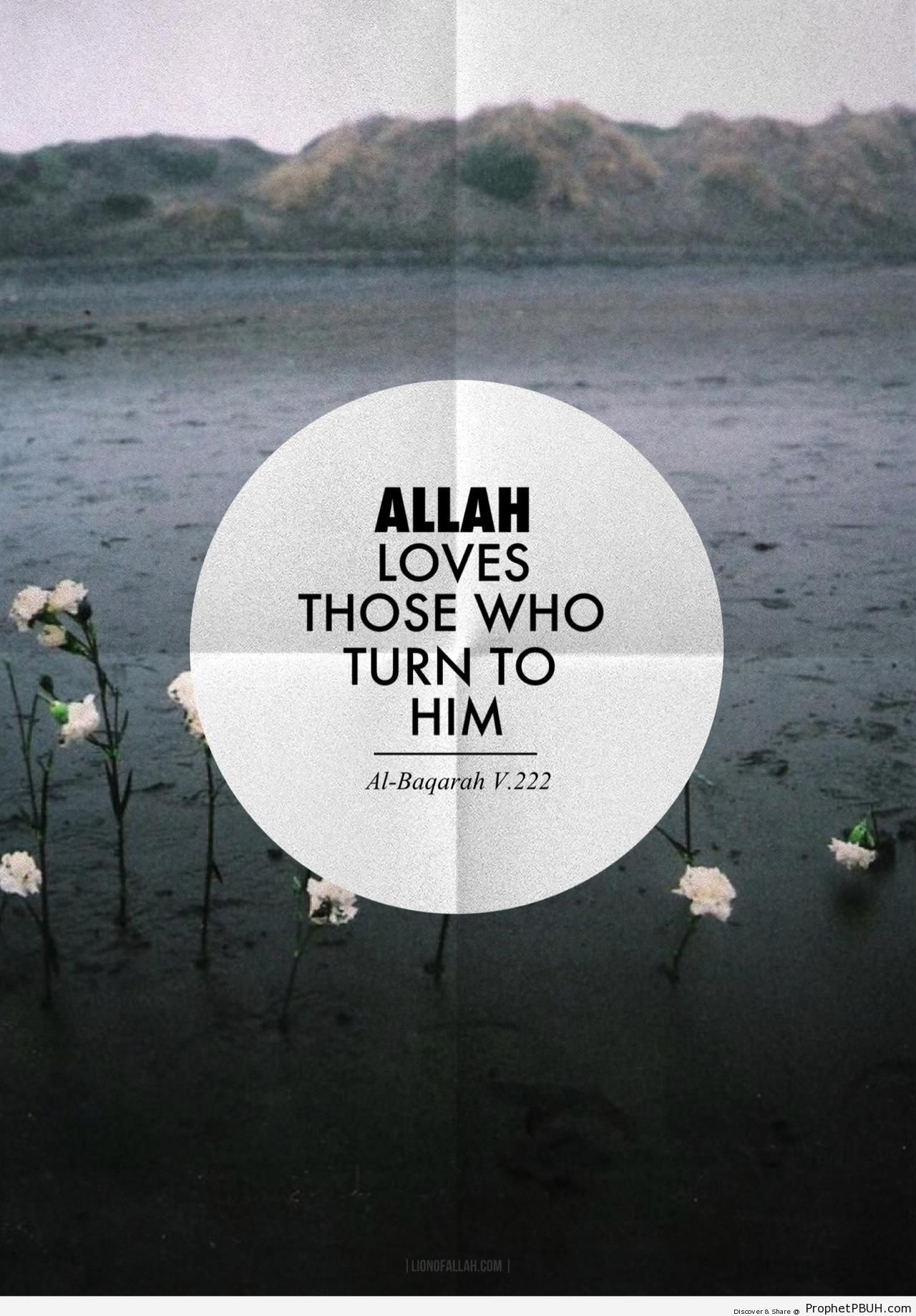 Allah loves those who turn to Him - Photos -