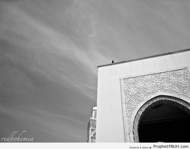 Arabesque Arch at Hassan II Mosque in Casablanca, Morocco - Casablanca, Morocco -Picture