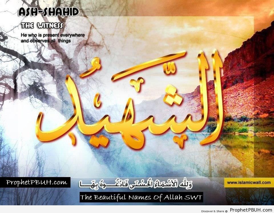 Ash Shahid - The Witness