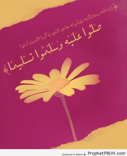 Ask Blessings Upon Prophet Muhammad ï·º (Quran 33-56; Surat al-Ahzab) - Photos of Flowers