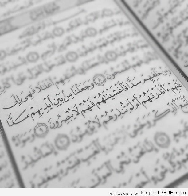 Barriers (Mushaf Photo With Artifical Focus on Quran 36-9; Surat Ya-Sin) - Mushaf Photos (Books of Quran)