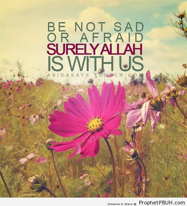 Be Not Sad – Islamic Quotes About Sadness and Depression | Prophet ...