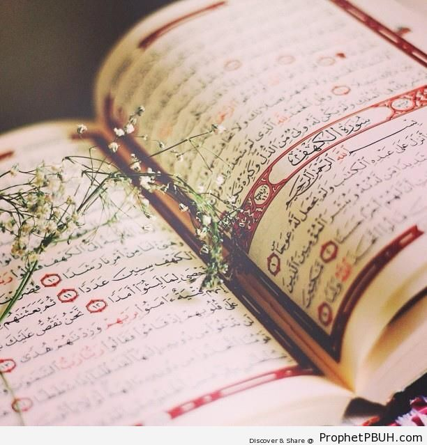 Beautiful Mushaf Photo Showing Start of Chapter 18 (Surat al-Kahf) - Mushaf Photos (Books of Quran)