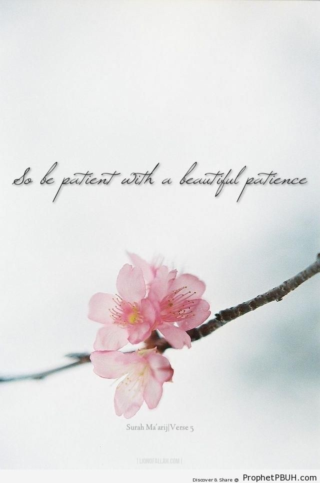 Beautiful Patience (Quran 70-5) - Islamic Quotes
