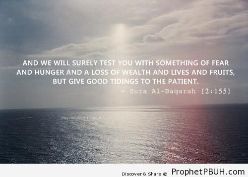 But Give Good Tidings [Quran 2-155] - Islamic Quotes About Patience (Sabr)