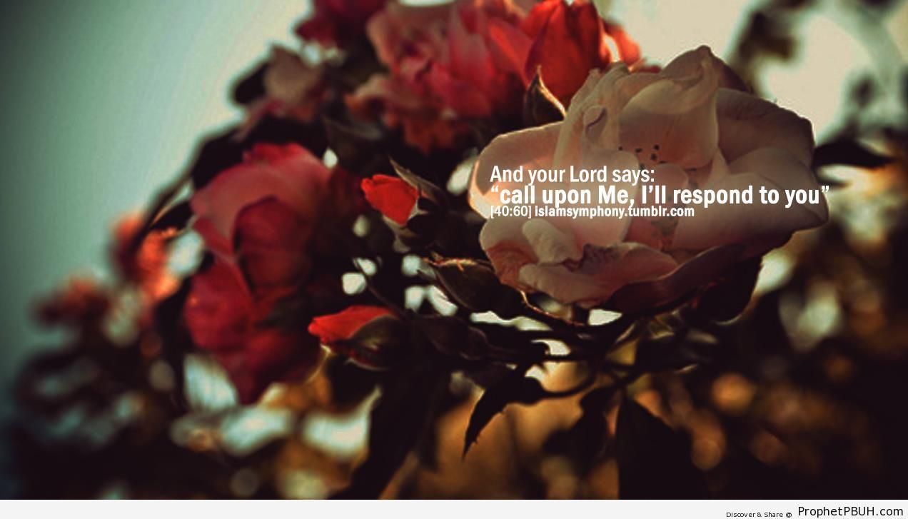 Call Upon Me (Quran 40-60 - Surat Ghafir) - Photos