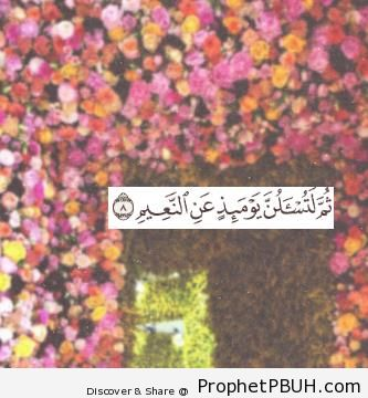Called to Account (Quran 102-8) - Islamic Quotes