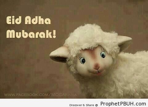 Cute Sheep Eid al-Adha Greeting - Drawings