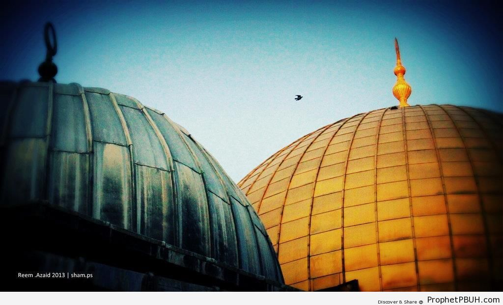 Domes of Al-Aqsa Mosque and Dome of the Rock (Jerusalem, Palestine) - Al-Aqsa Mosque (Bayt al-Muqaddas) in Jerusalem, Palestine -Picture