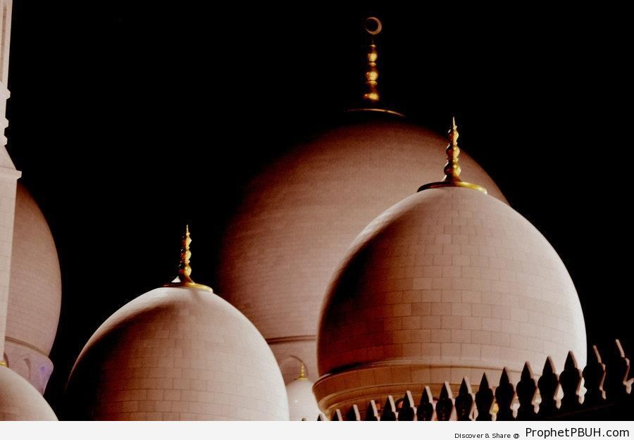 Domes of Sheikh Zayed Grand Mosque at Night (Abu Dhabi, UAE) - Abu Dhabi, United Arab Emirates -Picture