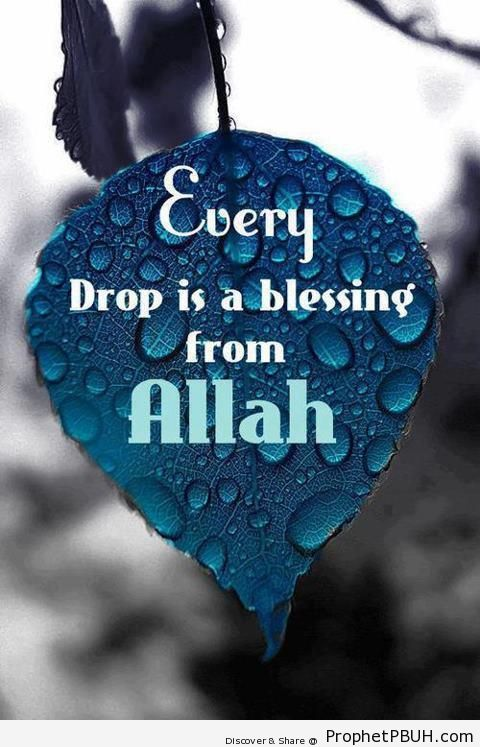 Every Drop is a Blessing - Islamic Quotes