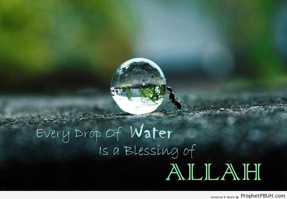 Every Drop of Water is a Blessing - Islamic Quotes About God's Kindness and Mercy