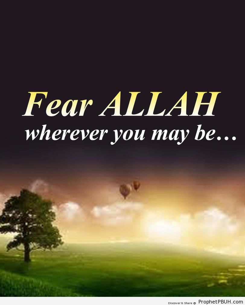 Fear Allah - Islamic Quotes About Taqwa (Fear and Mindfulness of God, Protecting Oneself from God's Displeasure)