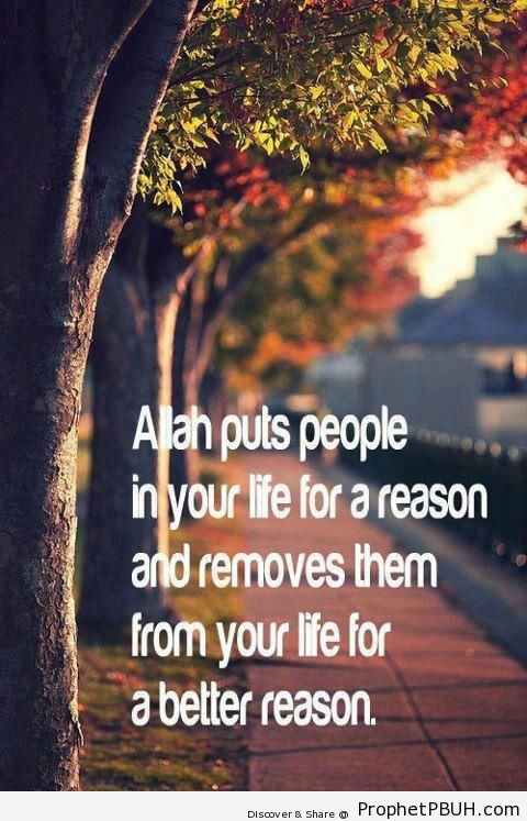 For a Reason - Islamic Quotes