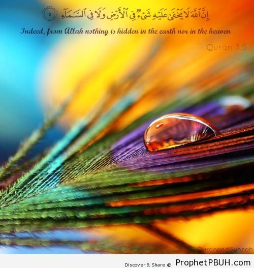 From Him nothing is hidden - Islamic Quotes About Allah's Omniscience (God's Knowledge and Awareness of Everything)