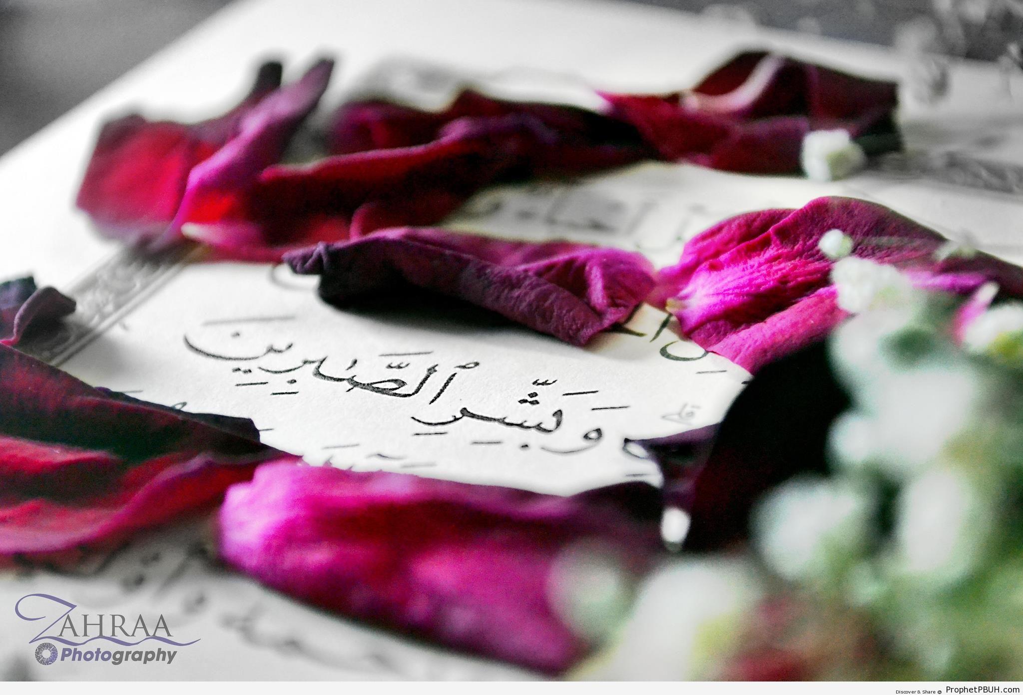 Glad Tidings (Quran 2-155 and Rose Petals) - Mushaf Photos (Books of Quran)
