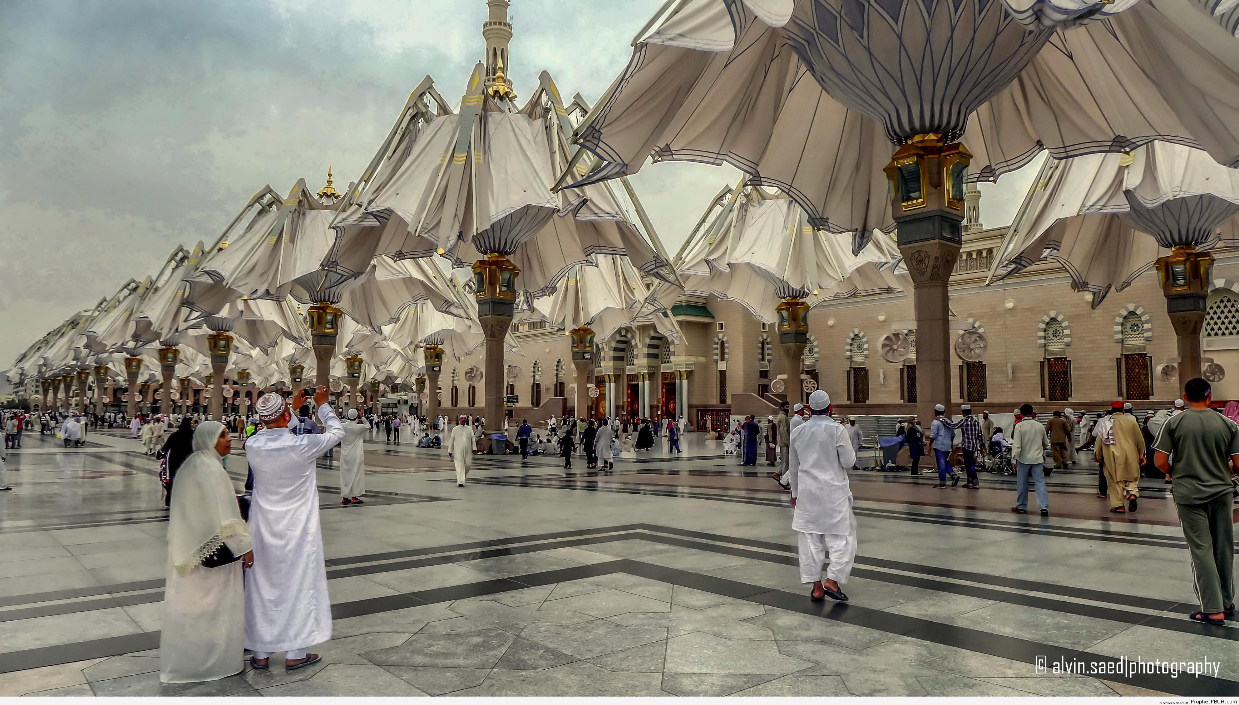 Half-Folded Shade Umbrellas at the Prophet-s Mosque (Madinah, Saudi Arabia) - Al-Masjid an-Nabawi (The Prophets Mosque) in Madinah, Saudi Arabia -Picture