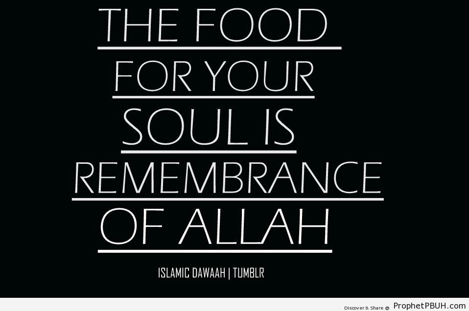 How to Feed the Soul - Islamic Quotes About Dhikr (Remembrance of Allah)
