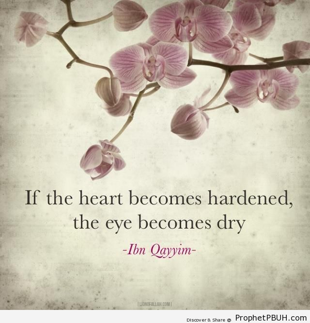 Ibn al-Qayyim Quote on Hard Hearts - Ibn Qayyim Al-Jawziyyah Quotes