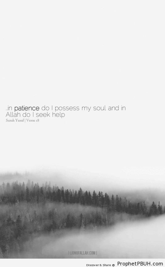 In Patience (Surat Yusuf 12-18) - Islamic Quotes