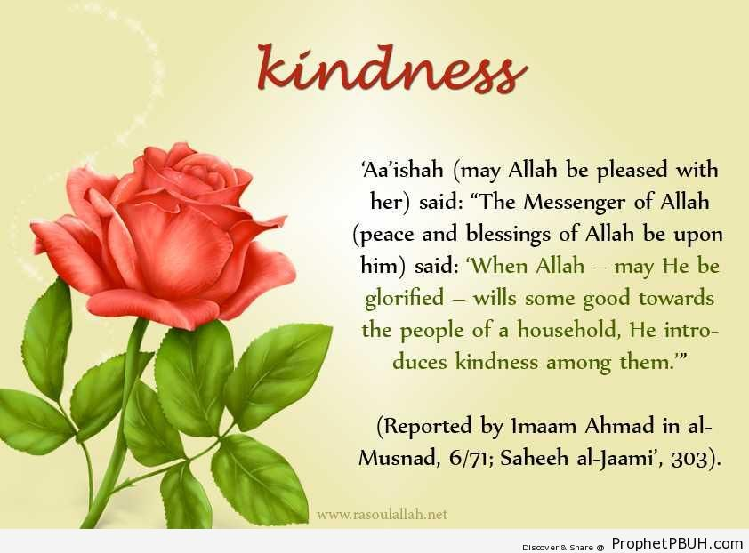 Kindness (Prophet Muhammad ï·º Quote Reported by `Aisha) - Hadith -Picture