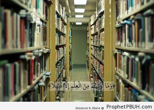 Knowledge (Quran 17-85) - Islamic Quotes
