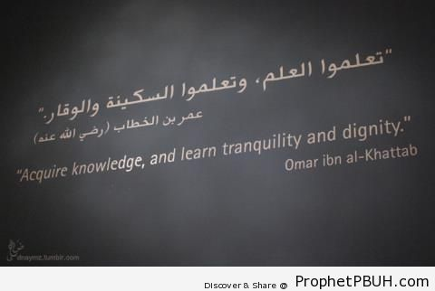 Learn Tranquility - Islamic Quotes