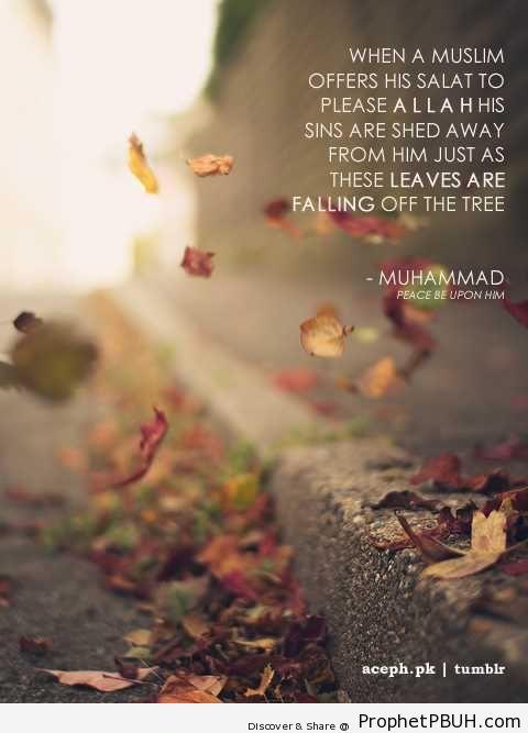 Like Falling Leaves - Hadith
