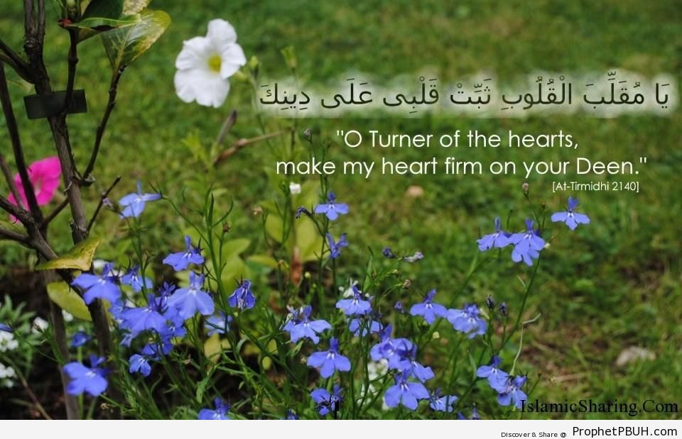 Make my heart firm on deen