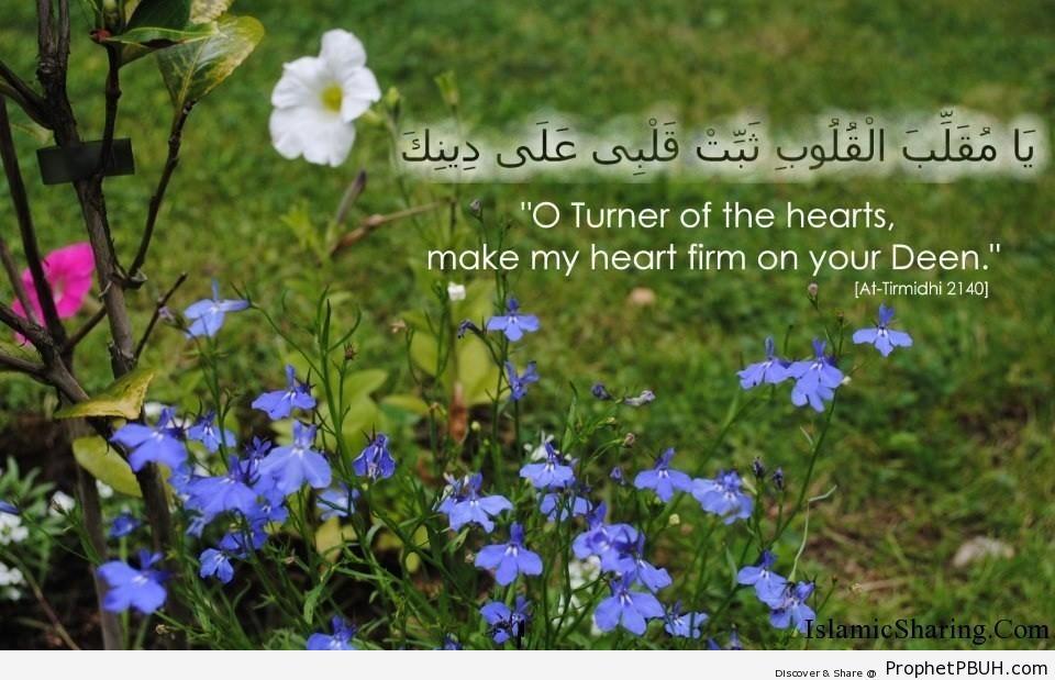 Make my heart firm on deen