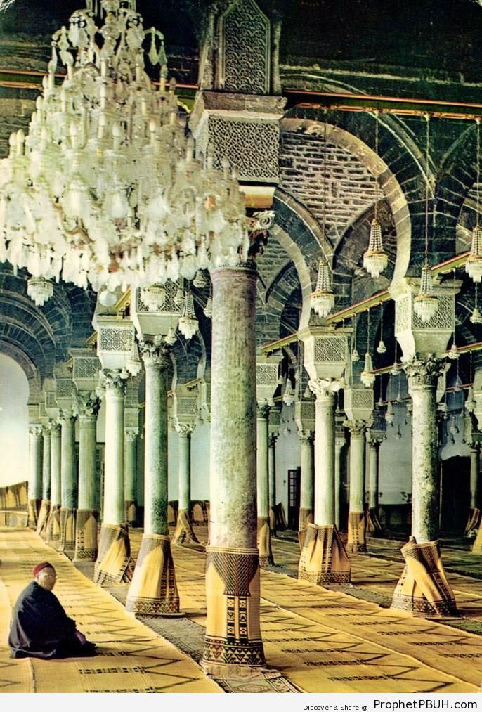 Man Sitting Inside Al-Zaytuna Mosque (Ezzitouna Mosque) in Tunis, Tunisia - Al-Zaytuna Mosque (Ezzitouna Mosque) in Tunis, Tunisia -Picture