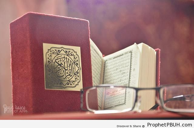 Maroon-Cover Quran Mushaf - Mushaf Photos (Books of Quran)
