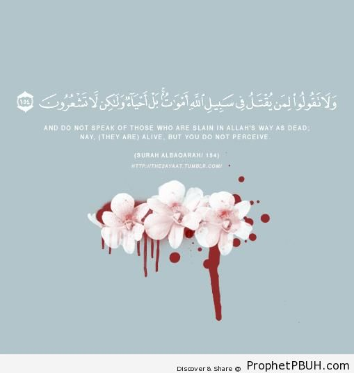 Martyrs (Quran 2-154) - Islamic Quotes