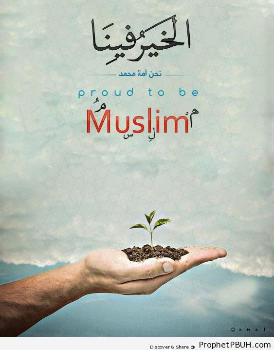 Meaningful Islamic Pictures (2)