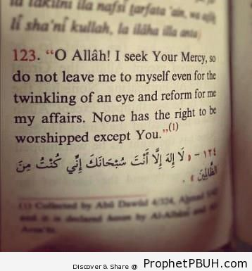 Meaningful Islamic Teachings (111)