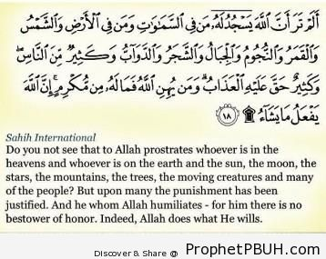 Meaningful Islamic Teachings (119)