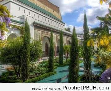 Meaningful Islamic Teachings (142)