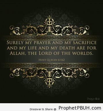 Meaningful Islamic Teachings (168)