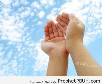 Meaningful Islamic Teachings (184)