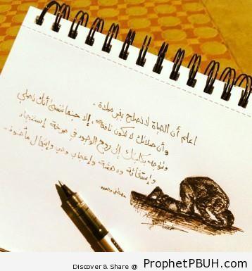 Meaningful Islamic Teachings (19)
