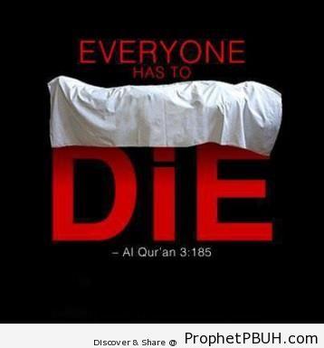 Meaningful Islamic Teachings (223)