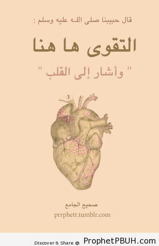 Meaningful Teachings of Islam (50)